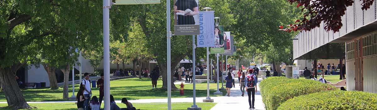 Campus walkway with banners