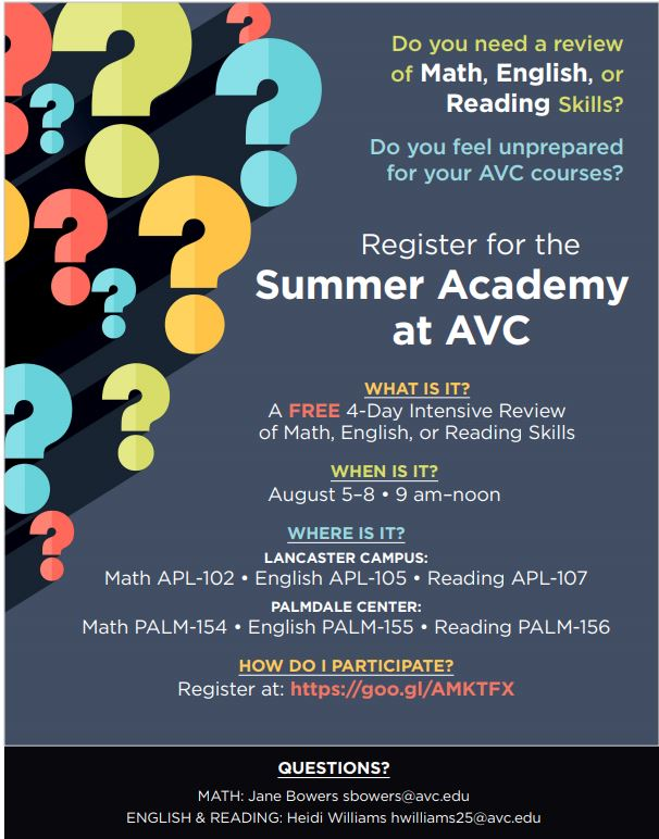 Summer Academy Flyer
