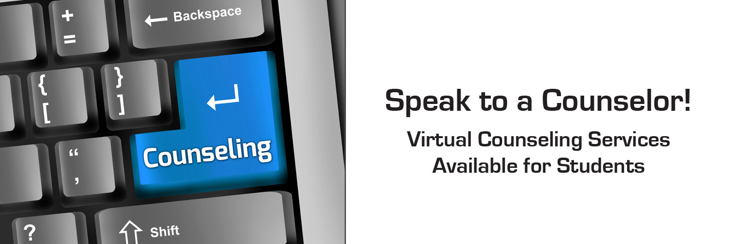 Virtual Counseling Services
