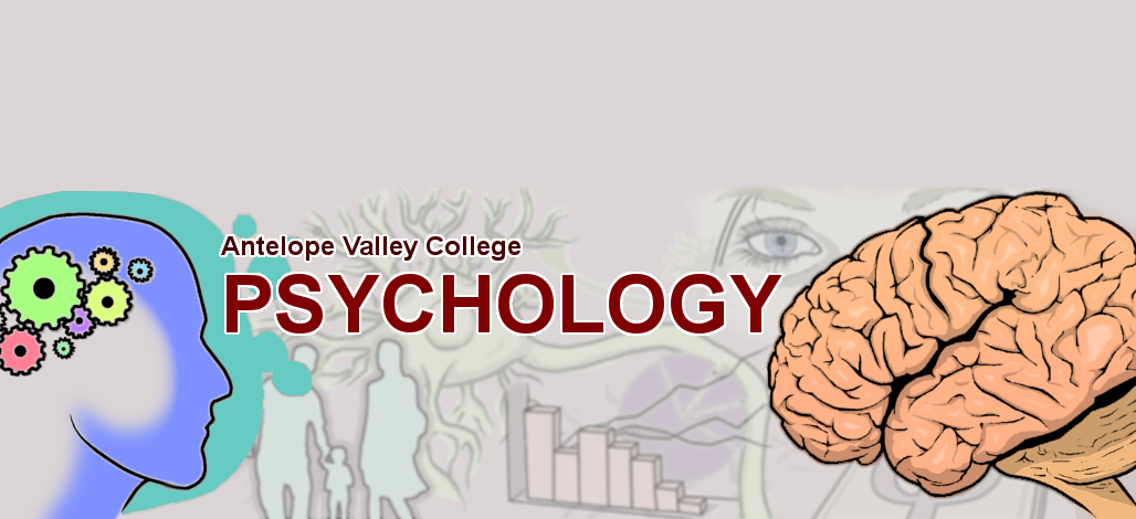Developmental And Child Psychology subjects to transfer from a college to a university for internati